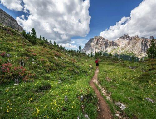 Vacanza in Trentino con l'Ncc: come organizzarla al meglio