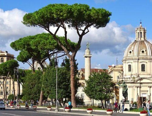 Taxi Roma: ecco le 6 cose che devi sapere per muoverti liberamente